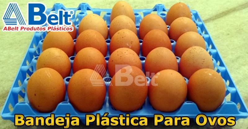 bandeja plastica para ovos