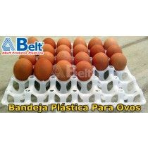 Bandeja-plastica-branca-de-ovos