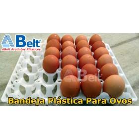 Bandeja de plástico para ovos (1 unidade natural)