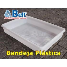 Bandeja plástica BP18 (1 unidade cor natural)